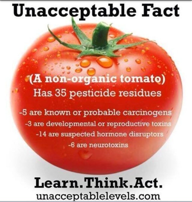 There are lots of chemicals in an non organic tomato. Do call us for organic tomatoes and sweet corn