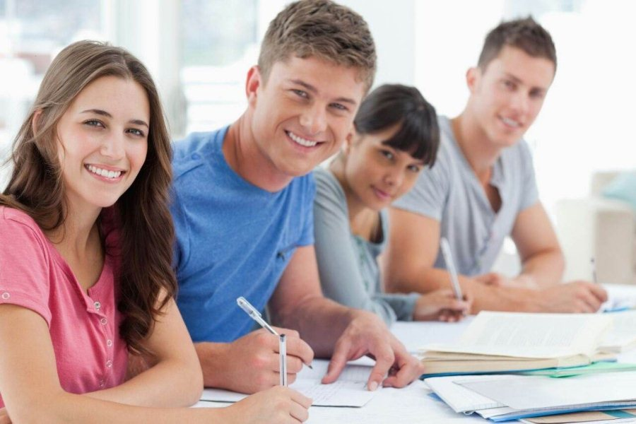 Study in NewZealand   Study in NewZealand with paid internship of 20hrs per week. Click