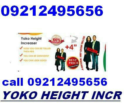 Original yoko height