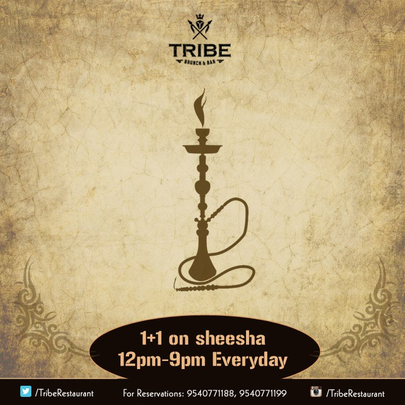 Tribe Brunch and bar