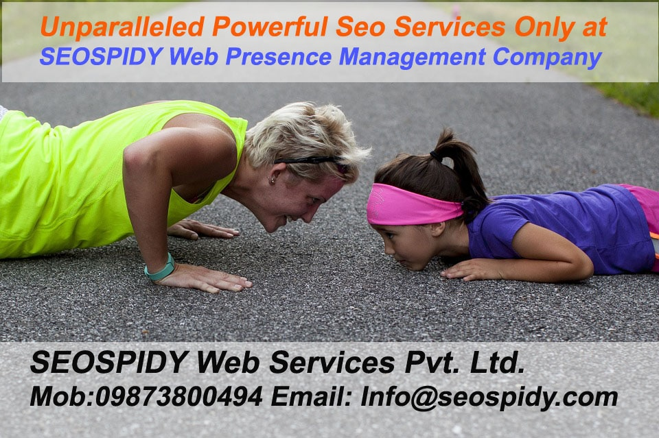 Professionals Working at seospidy will take care of every aspects from website structuring, onpage optimization, Keyword research, Hummingbird Algorithm and Core Algorithm updates including Panda & Penguin, White Hat Seo Strategy, Inbound Link building, Domain Authority. Search Engine Optimization is long term strategy that takes its time but generate great Return on Investment in terms of increase in website Traffic, User Engaging Platform, Customer Centric Approach, Brand Popularity and Visibility. SeoSpidy is seo services Company in Delhi Ncr India that brings Profitability to your online business visit seospidy today Google Promotion Company in Delhi | Online Promotion company in Delhi | Website Promotion Company in Delhi | Seo Service Providers in Delhi.