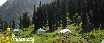 Holiday destinations in jammu - Sonmarg