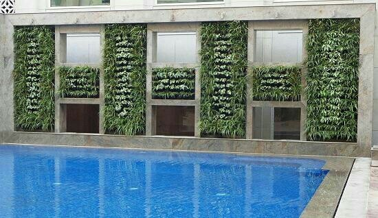 Vertical Green Wall planting Pallate The planting scheme for the vertical wall has been devised after careful consideration of various plants which could survive indoors while giving a lush luxurious look to the green wall. The placement of the plants has been designed such that their colours and forms compliment each other to make the unit look like one harmonious installation.  R.S Enterprises 9911303925/9990154546
