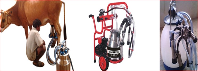 Milking Machine Manufacturerswe Shreem Dairy are the most demanded and reputed manufacturer and supplier of a wide range of Dairy Equipment which include Milking Machine, Brush Cutter, Chaff Cutter, Cream Separator, Manual Cream Separator, Cow Mat, Milk Can etc. These products are used in production and storing of milk and milk products and are highly needed in various Dairy Farms and IndustriesMilking Machine Manufacturers In CoimbatoreMilking Machine Manufacturers In TamilnaduLeading Milking Machine ManufacturersQuality Milking Machine ManufacturersMilking Machine Manufacturers In IndiaMilking Machine Suppliers In CoimbatoreMilking Machine Suppliers In TamilnaduMilking Machine Suppliers In India