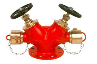FIRE HYDRANT SYSTEM DOUBLE HYDRANT VALVE