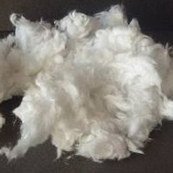 Mineral Wool.,                     We Are the Fine Manufacturer And Supplier Of Mineral Wool In Coimbatore., We Are One Of  The Leading Industry Of Mineral Wool Supplier In Coimbatore.,    Features            Excellent Finish           Smooth Texture           Light Weight