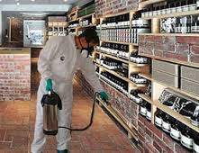 Commercial Pest Control Services in Sriperumbudur  Our services include various Industry-acclaimed procedures. To mention a few, termite control, fumigation, prevention of ants and rodents, thermal fogging, gel treatment and herbal treatment. MRS pest control maintains its position as one of the best residential pest control services in and around Chennai region. We are also seeked by several business firms as we maintain ourselves as one of the best commercial pest control services in southern region of India.