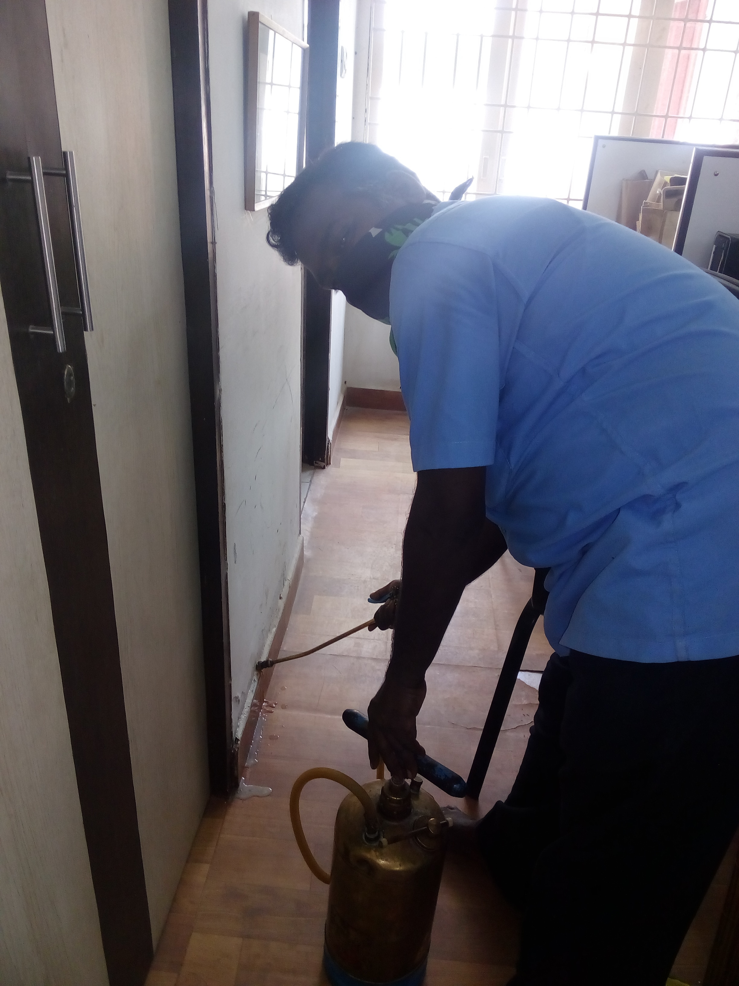 Pest Control Services For Mosquito in Chennai.