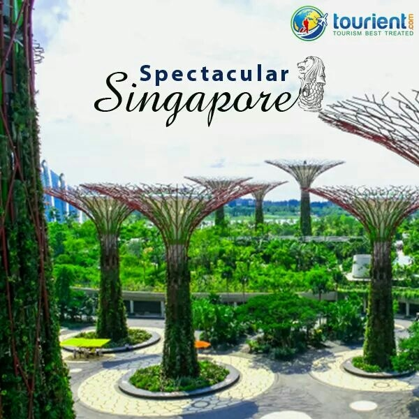Discover the beauty of #Singapore at Marina City Park which offers a breathtaking view of the city skyline and the sea. Visit Singapore with Tourient.   Enquire Now - www.tourient.com