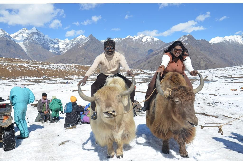WIN A FREE STAY BOOK NOW::  mail us roversofhimalaya@gmail.com
