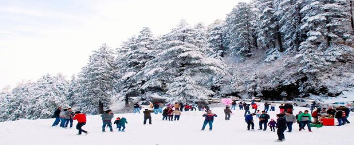 GROUP TOUR FOR MANALI SHIMLA WITH CHANDIGARH  4N/5D |DEL- MNL-SML-CHD- DEL | MINIMUM 40 PAX REQURED FOR GROUP TOUR STARTING @ 5999 /- PER PERSON ON QUAD SHARING BASIS ONLY  Itinerary     Day 1:   Delhi - Manali  (570 kms/ 14-16 Hrs)(Overnight Travel)  Day 2:   Manali Half Day City Tour (3 - 4 Hrs.)  Day 3:   Solang Valley (13 Kms /1 Hr)  Day 4:   Manali – Kullu-Shimla (260 Kms/8-9Hrs)  Day 5:   Shimla - Kufri - Local Sightseeing – Chandigarh (125Kms/3-4Hrs)  Day 6:   Chandigarh –Local Sightseeing-Delhi (230Kms/3-4Hrs)