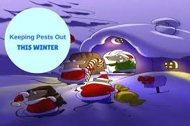 Winter season mean no Pest and no need of Pest Control? Wrong what about those Pest who are hiding inside premise and what about those Pest who are regularly contaminating food and what about those Pest who are damaging or destroying your asset. Winter doesn't mean there is no requirement of Pest Control. Existing Pest infestation keep on increasing if Pest Control is neglected in winter. To make home Pest free there is always requirement of regular Pest Control. Contact our Pest Control Expert for Best Pest Control in your locality we make sure Pest Control solution provided by our Pest Control team is effective to eradicate Pest from your residence. Reach us for Herbal Pest Control Services.