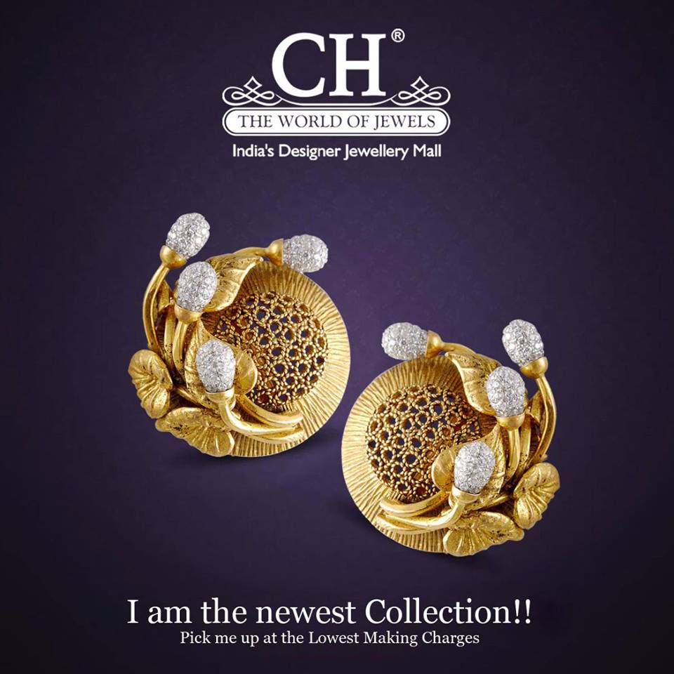I am the Newest collection!!!