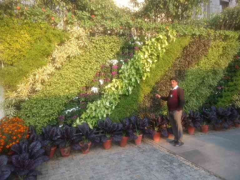 Site- JINDAL NEW DELHI GREEN WALL Done by Mr. Rajesh Kumar/Mr.Ranjeet Singh Offering more than just eye-catching beauty, Planterra green walls are value-added solutions that bring a wealth of additional benefits such as:  Improved air quality: On average, indoor air can have up to 100 times the concentration of air contaminants found outdoors. Planterra green walls are natural biofilters that excel at removing volatile organic compounds (VOCs) and CO2 while creating energy-rich oxygen. Our green walls always include plenty of the best mature plants for improving air quality and ensuring a healthy indoor environment.  Better health & productivity: Increased oxygen makes us feel more alert and awake. Planterra green walls are a natural and cost-effective way to add extra oxygen into work environments while reducing stress and increasing comfort, focus, productivity and psychological well-being.  Less noise:: The plants in our green walls reduce noise pollution with leaves that reflect and absorb acoustic energy to dampen sound, echoes and rings.  Green marketing: Looking for a perfect way to promote your green image? Planterra green walls are an impressive symbol of eco-friendliness and can contribute toLEEDcredits for improving the sustainability and improving air quality.  From concept through budgeting, development, installation and guaranteed maintenance, our team can help you to realize your ideal green space in any environment.Contact ustoday and put our expertise to work for you