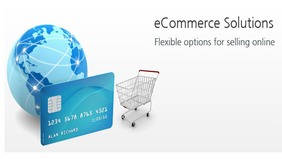 E Commerce Solutions Bangalore Digivertical Technologies Private Limited provides e-commerce  solutions and storefronts customized to suit your specific needs and  requirements in both look and feel, and functionality of your online  ecommerce store.