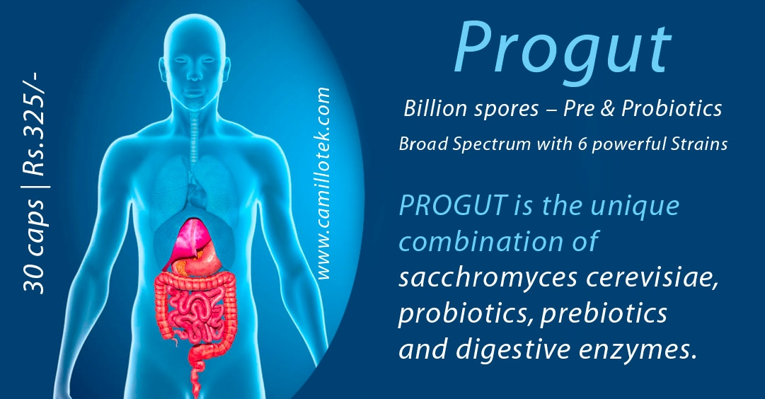 PROGUT is the multi (powerful six) strain probiotic product. Progut Supports digestive function.  PROGUT is the unique combination of sacchromyces cerevisiae, probiotics, prebiotics and digestive enzymes.  More info http://camillotek.com/all/progut.html  Buy now https://www.payumoney.com/store/buy/camillotek007  Pro Gut supplements, Progut probiotics and prebiotics, ProgutCapsule, Pro-Gut Dosage & Drug, Progut Strip, ProgutBroad Spectrum Capsules, Buy Digestive Capsules, Buy ProbioticsProgutonline, Buyprogutonline, OrderprogutOnline.  Progut supplement manufacturers, progut supplement suppliers, progut supplement exporters wholesalers, traders in Chennai, India.