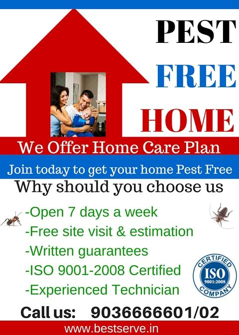 we make pest free ho