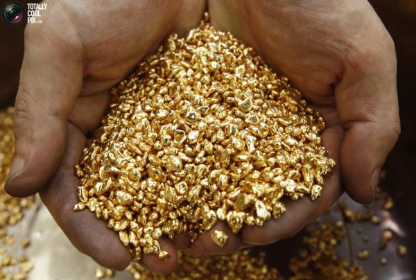 Gold Refinery in Chennai  To meet the specific requirements of our clients, we are engaged in providing Gold Refinery Service as per their choice.