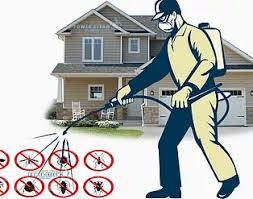 Have Pest infestation in your house wondering to have @Pest Control done? Don't hesitate. Call Golden Hi Care Pest Control for safe Pest Control Solution. Pest are Expert in hiding so you need Expert Pest Controller to evict them. Have safer Pest Control option with Zero Pest tolerance for your family. Contact Golden Hi Care Pest Control Expert for safe Pest Control Solution. Our Pest Control professional are providing odourless Pest Control Solution without vacating your house. Contact Golden HiCare Pest Control professional for Best Pest Control our Pest Control Solution is customized according to the need of your home. We make sure Pest Control Solution provided by our Pest Control Expert is effective to eradicate Pest from your residence. Reach us for Herbal Pest Control Solution. Healthy house are Pest free house.