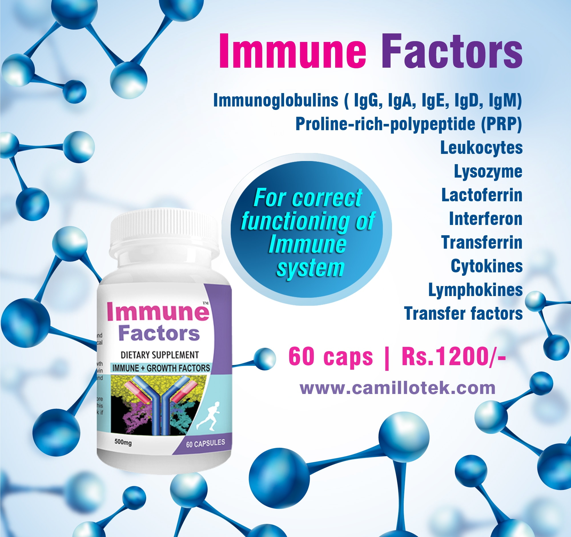 The immune factors are essential for the correct functioning of immune system. Camillotek Immune Factors contains Immunoglobulins (antibodies) - IgG, IgA, IgE, IgD, IgM, Leukocytes, Lysozyme, Lactoferrin, Interferon, Transferrin, Proline-rich-polypeptide (PRP), Cytokines, Lymphokines and Transfer factors.  Buy Immune factor capsules online, immune growth factors, immune support capsules, capsules for immunity, immune strength tablets, natural immune increase capsules and get immunity naturally. Immune factors capsules manufacturers, Immune factor capsules suppliers, Immune factor capsules exporters wholesalers, traders in Chennai, India.