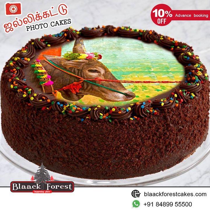 இந்த தைத்திருநாளில் தமிழர்களின் வீர விளையாட்டான #ஜல்லிக்கட்டு போற்றுவோம்!!! Specially Designed #Jallikattu themed Fresh Cream Photo cakes from Blaack Forest  Shop Online/Whatapp to get 10% Off Buy #Cakes online: http://www.blaackforestcakes.com/ or Call us at - 84899 55500 #Whatsapp to order: https://goo.gl/YJHhJz  #JallikattuCakes #PongalCakes #DesignerCakes #FreshCreamCakes