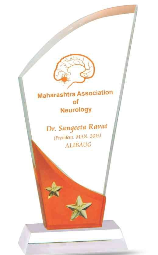 Acrylic trophies Acrylic trophies with orange sheets and star