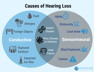 Causes Of hearing Lo