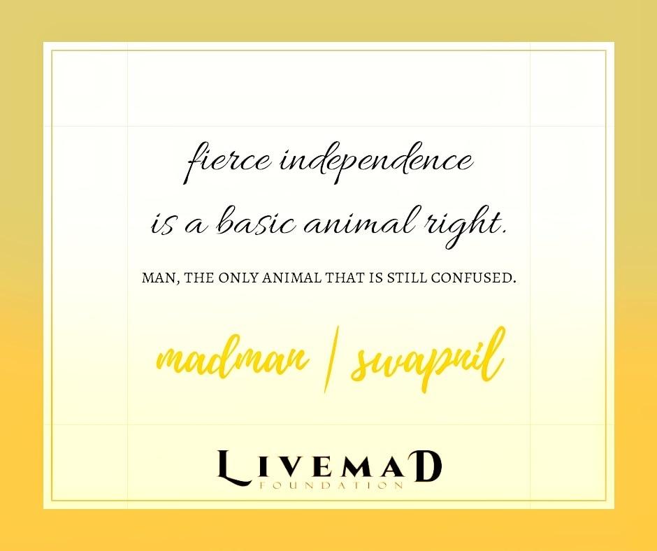 Livemad Wisdom Talks