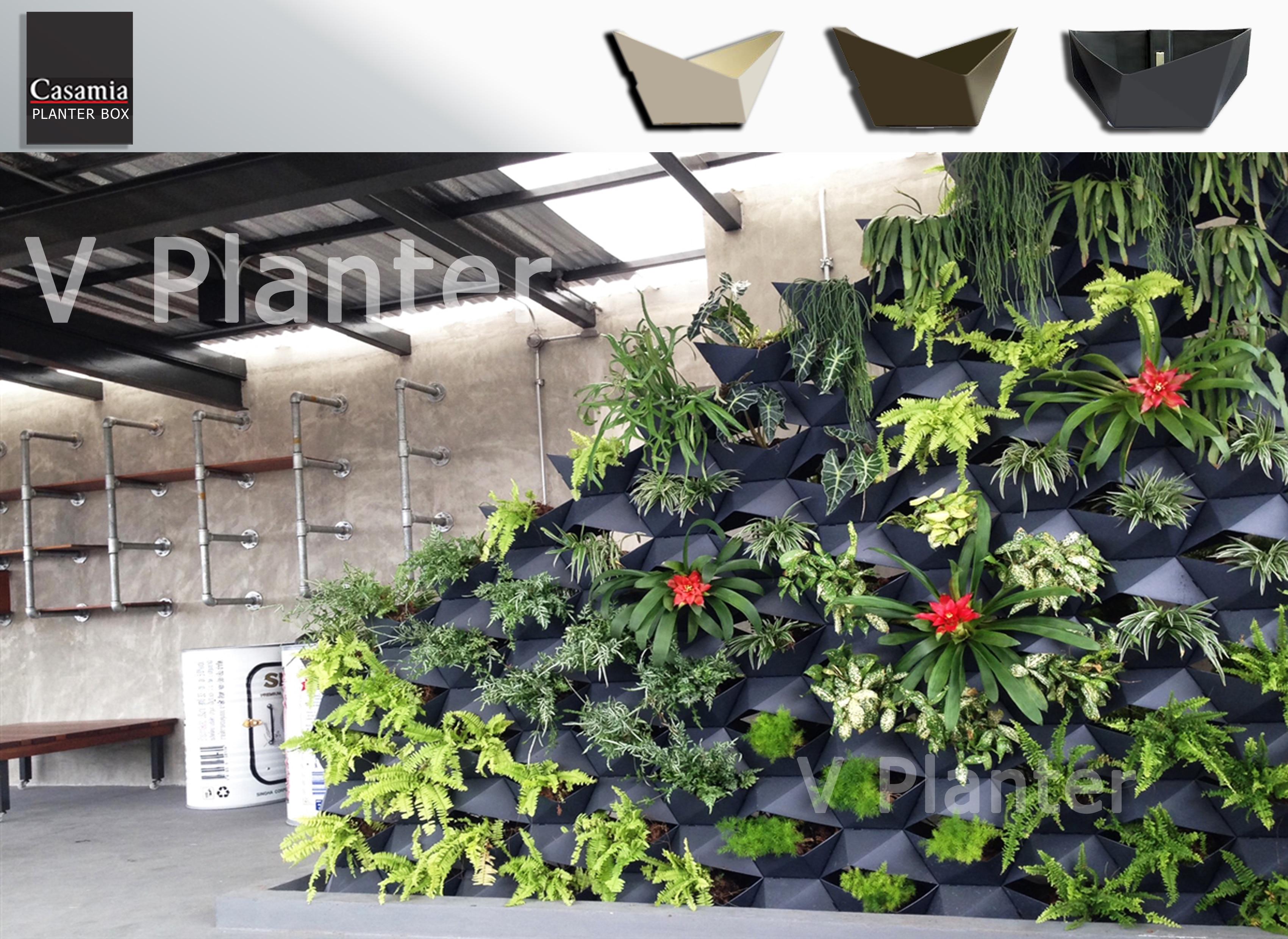 """V Planter""""The poet"""