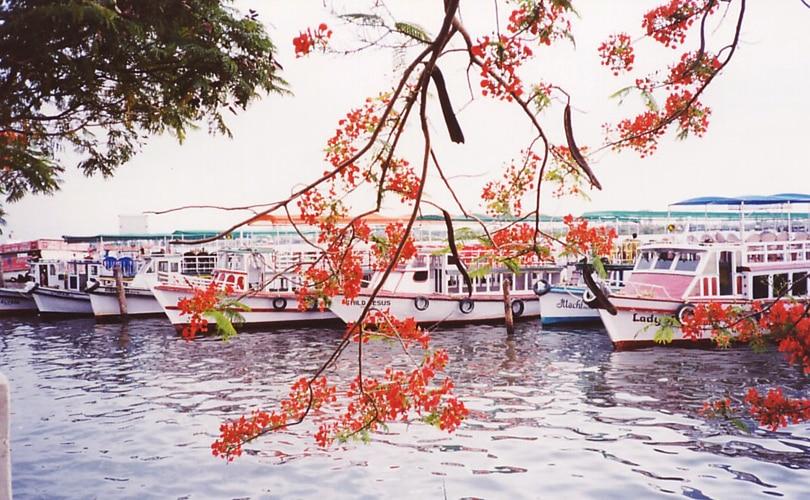 Cool Kerala  Day 1 : Cochin Lo