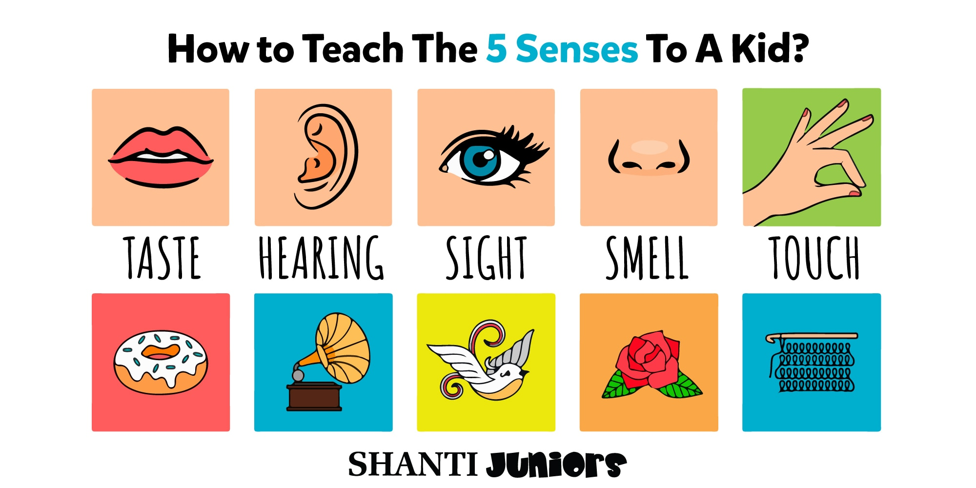 Teaching The Five Senses To Preschoolers