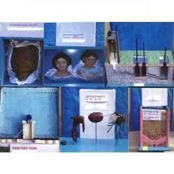 P.S.M. Microscopic Glass Slides Protozoa  Entamoeba histolytica W.M. Entamoema histolytica cyst. Entamoeba coli W.M. Entamoeba histolytica cyst. Leishmania tropica. Malaria parasite (in H. blood). Malaria parasite (signet ring). Plasmodium  - by Young Brothers, Washington County