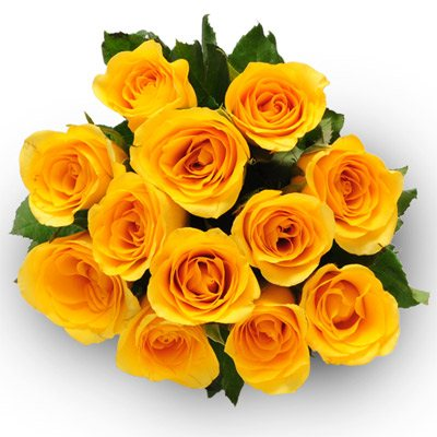 Yellow Delight  For the perfect moment, Flowers2u have a bunch of 12 yellow roses for you which is the best present. Share your beautiful moment with the special one, by gifting these yellow roses. A sweet gesture for them to tell them the - by Flowers2u, Bangalore