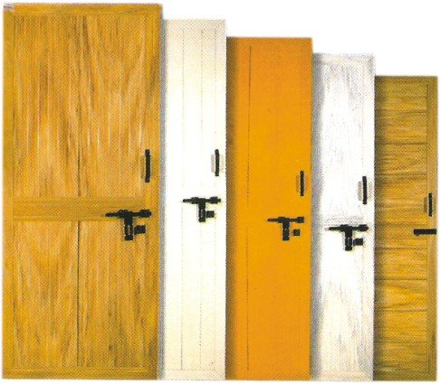 PVC Single Panel Bathroom Doors