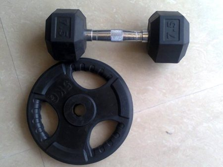 RUBBER COATING  DUMBBELLS AND WEIGHT PLATES RS, 150 /KG - by My Fitness, Chennai