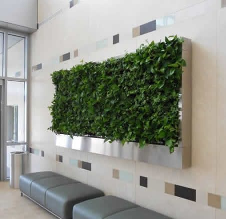 Green Wall  Specification  :  Material         : Virgin polypropylene (PP) UV rays stablised.  Load capacity : 150Kg / module  Weight          : 3 kg per module  Colour           : Green  Packing         : Box contains 6 module - by Integrated Studio , Bangalore