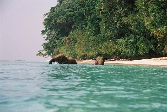 Andaman Islands: Romance & Adventure   World Travel & Tours  - by WORLD TRAVEL CLUB (WTC Tours), Chennai