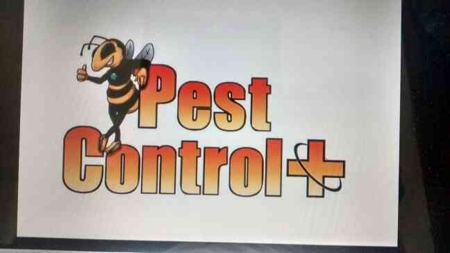 Best pest control in Hyderabad.www.vcurepestcontrol.com - by V CURE PEST CONTROL, Hyderabad