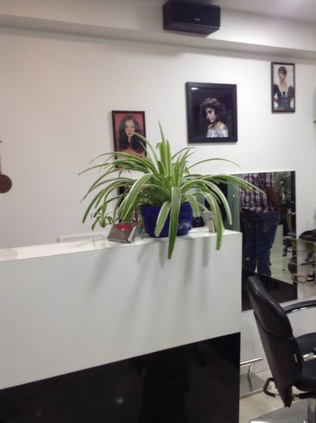 We have best salon in Ahmedabad - by Tress Tag, Ahmedabad