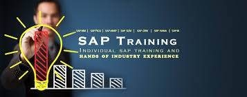 SAP Training institute in Hyderabad - by Sap Space Hyderabad, Hyderabad