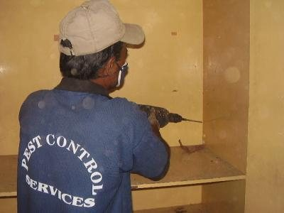 how to save your furnitures......make your valueables free from pest.........pest control in nagpur - by CENTRAL INDIA PEST CONTROL, Nagpur