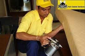pest control treatments at hotels, lodges........make your hotel free from bed bugs and other insects - by CENTRAL INDIA PEST CONTROL, Nagpur