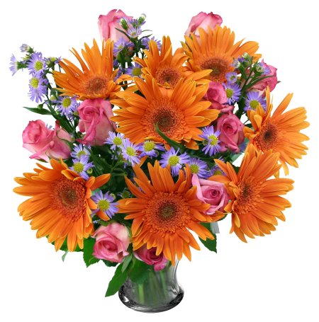 Fresh flowe r delivery in Arera Colony Bhopal