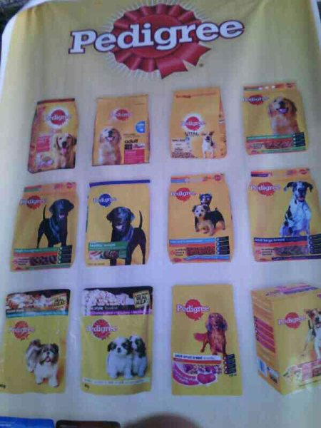Complete range of PREDIGREE products in indore available at PET JUNCTION - by Pet Junction, Indore