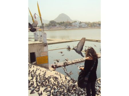 """""""Evening prayers and feed the pigeons at the ghats""""  You could join one of the daily evening prayers on the ghats. Everyone is welcome here.  Varaah Ghat: At around 6:45pm. Less people there. It has a corner view of the pond. Gau Ghat: At a - by incredible pushkar, Pushkar"""