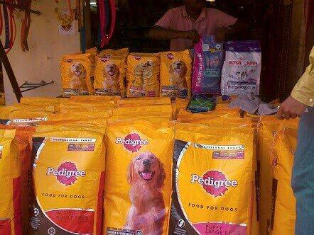 Pet shop in shivajinagar  - by Wet Pets, Bangalore
