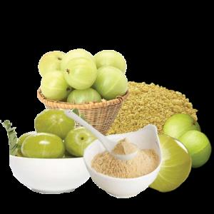 GCT Amla Powder