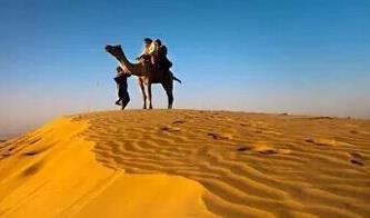 Camel Safari in Dunes jaisalmer - by camel safari dunes camp, Sam