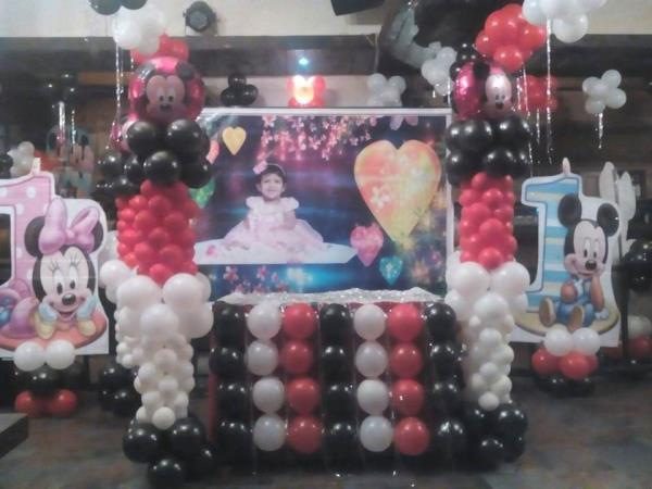 Birthday Party Organiser