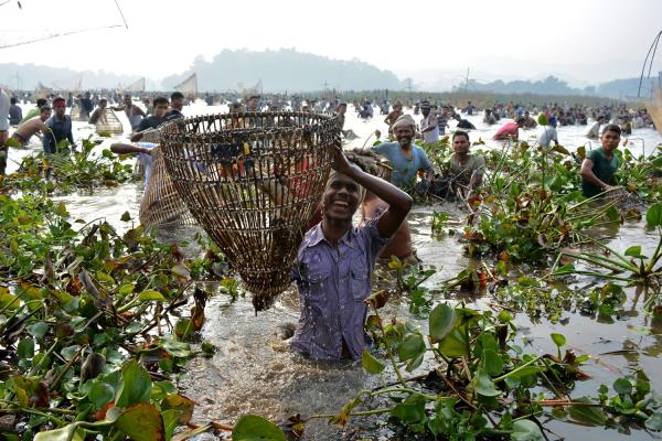Community Fishing in Assam